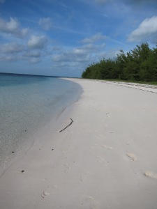 Powell Cay NW beach