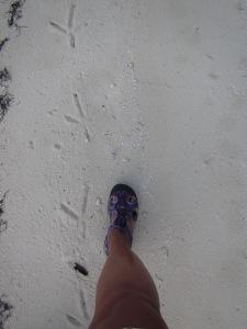 Size 9 footprints