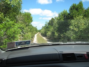 006 - Road to Conch Cove